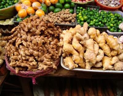 ginger medicinal herb