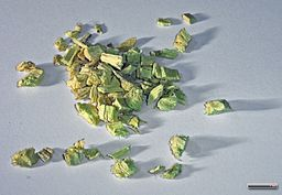 licorice root: Rillke [CC-BY-SA-3.0-de (http://creativecommons.org/licenses/by-sa/3.0/de/deed.en), GFDL (http://www.gnu.org/copyleft/fdl.html) or CC-BY-SA-3.0 (http://creativecommons.org/licenses/by-sa/3.0)], via Wikimedia Commons