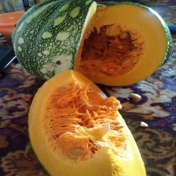 Pumpkin seeds can be eaten raw, parched or roasted.