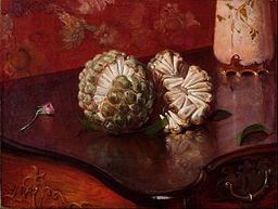 Sweetsop: By Agostinho da Motta (1824 - 1878) (Brazilian) (Painter, Details of artist on Google Art Project) (Google Art Project:  Home - pic) [Public domain or Public domain], via Wikimedia Commons
